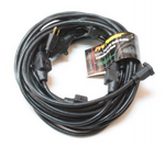 """Century Wire & Cable 300V Century® 52-1/2""""  Black Power Distribution Cord"""