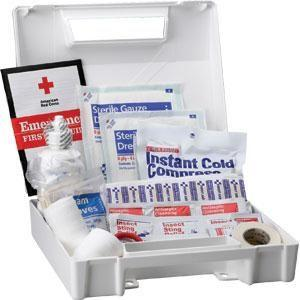 ANSI 25-Person, 105-Piece Bulk First Aid Kit (Plastic)