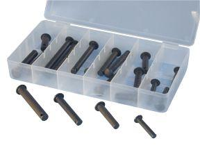 ATD 365 20 pc. Clevis-pin Assortment
