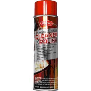 Instant Detail Cleaner & Polish, 16 oz Aerosol