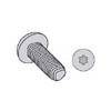 Torx_ Pan Head 18/8 Stainless Steel Passivate Wax Tri-lobular TT  Thread Rolling Screws